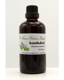 Ground Ivy - tincture 100 ml