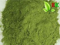 Barley grass powder Extra quality