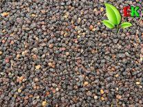 Elder berries Extra quality
