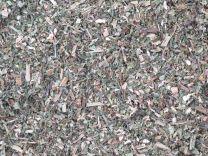 Deadnettle herb