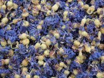 Cornflowers with calyx
